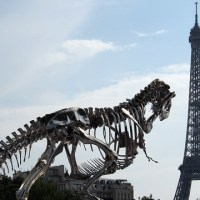 T-rex on Seine