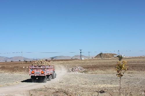 20131011_7144_sugar-beet-truck_Small