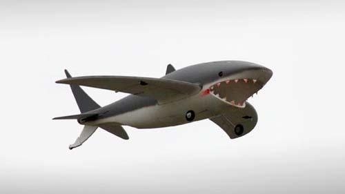 tiburonTeledir