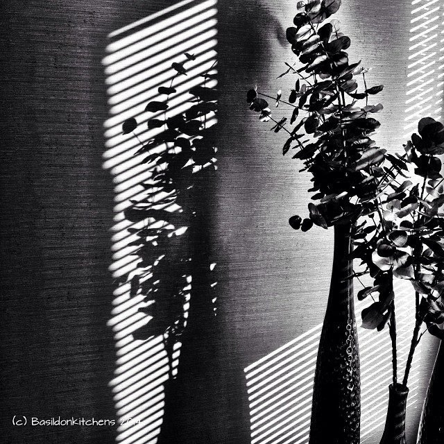 15/1/2014 - black & white {lovely shadows on the wall} #fmsphotoaday #black #white #shadiws #sunshine #stilllife
