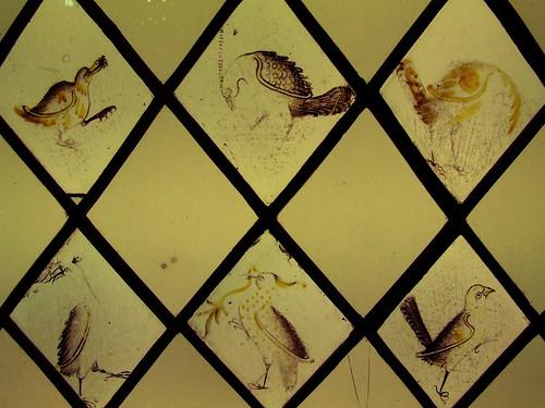Medieval bird paintings