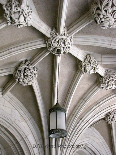 Sterling Law Building ceiling-Yale