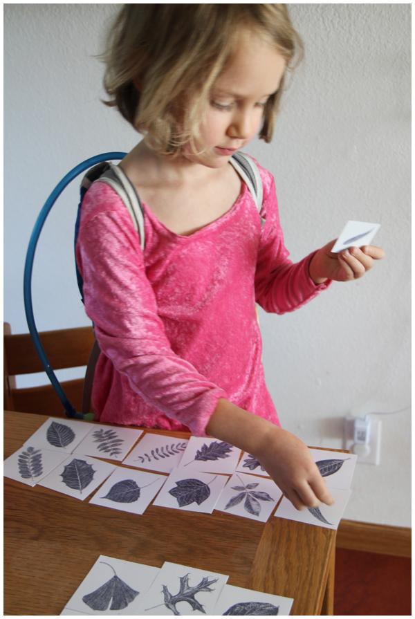 Everyday Learning: Playing Tree Leaf Bingo