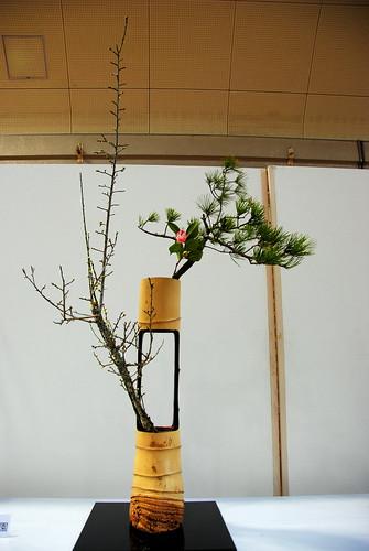 Meijo Koen Jan 2014 020r
