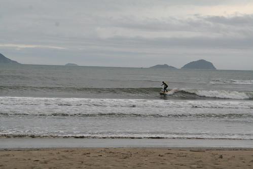 Surf Rat