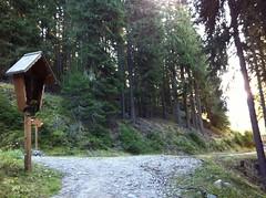 Holzkreuz am Wegesrand