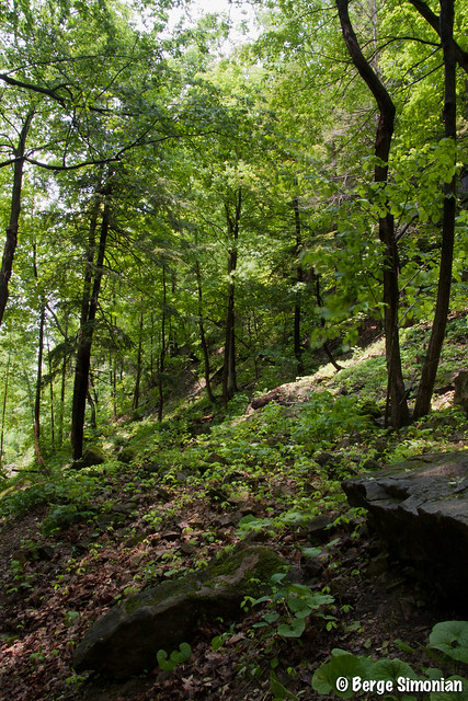 Waterfalls_06_2011-06-04