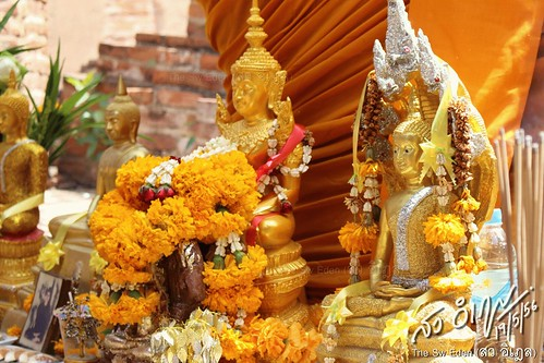 พระพุทธรูปทอง วันมาฆบูชา