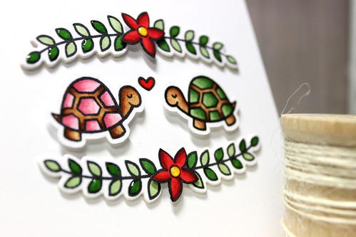 Love Turtles - Close Up