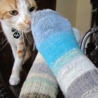 Boring Can Be Beautiful - Plain Vanilla Taiyo Socks