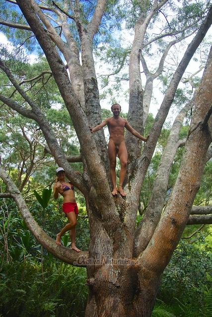 naturist  0000 Iao valley, Maui, Hawaii, USA