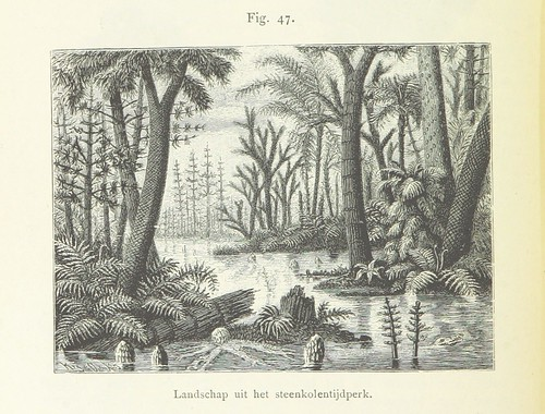 Image taken from page 182 of 'Onze aarde. Handboek der natuurkundige aardrijkskunde ... Met 150 platen en 20 kaartjes in afzonderlijken Atlas'