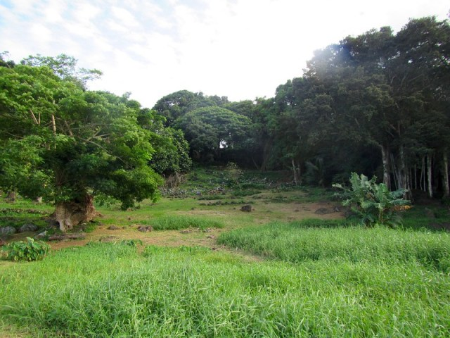 Picture from Ulupo Heiau