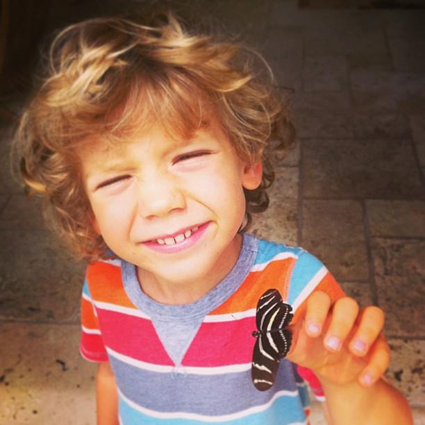 Finn makes friends with a zebra butterfly