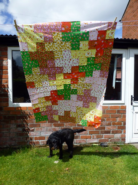 Shannon's First Quilt Top