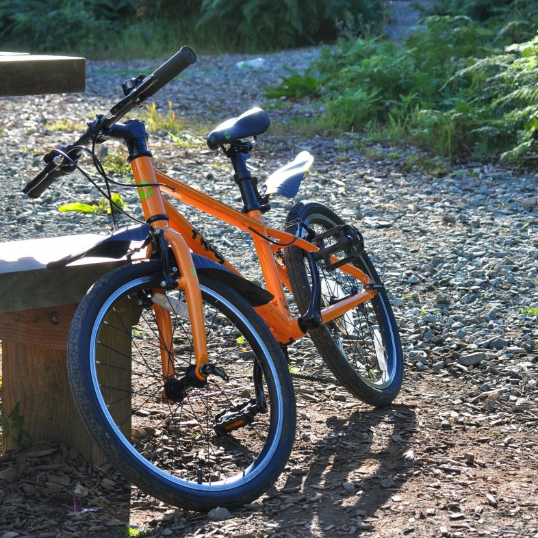 "Review of the Frog 55 quality kids bike with 20"" wheels"