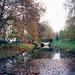 Poissy - Parc Messonier 04-15