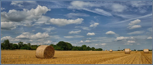 Die Ernte ist eingebracht by OK's Pics