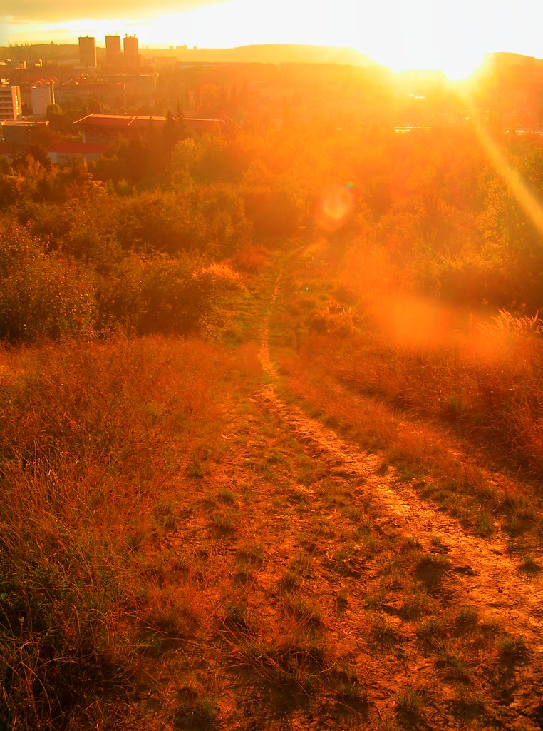 Sunshine Path