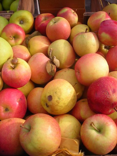 Breaburn apples