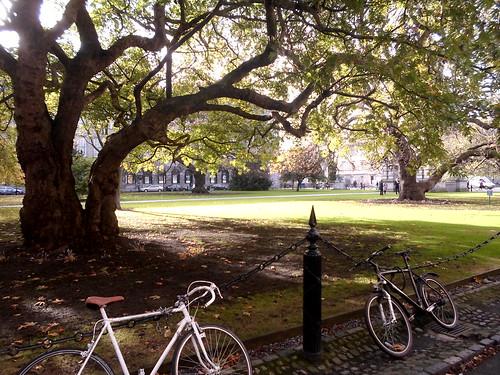 Quad, Trinity College