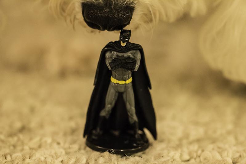 Batman is Unimpressed #12