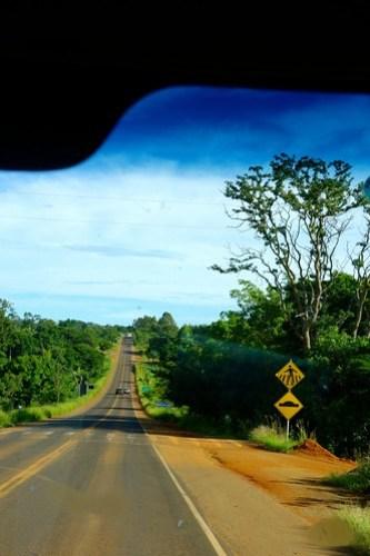 Road in Brasil, between Belo Horizonte and Romaria