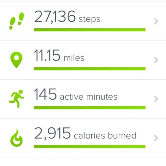 so much walking!