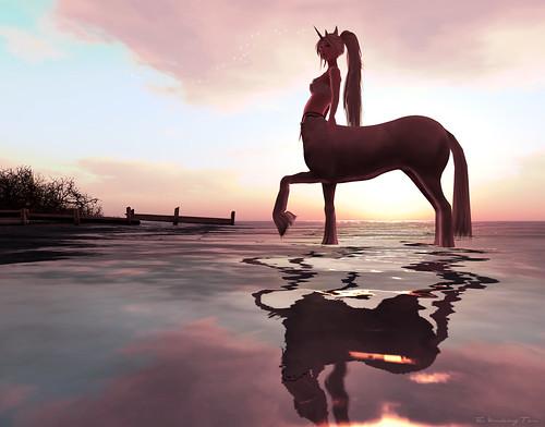 ~unicorn centauress~