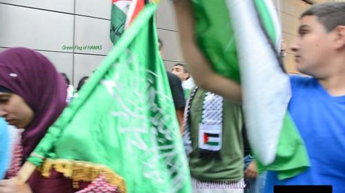 hamas flag 1