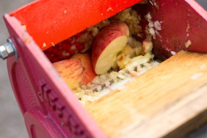 apple grinder