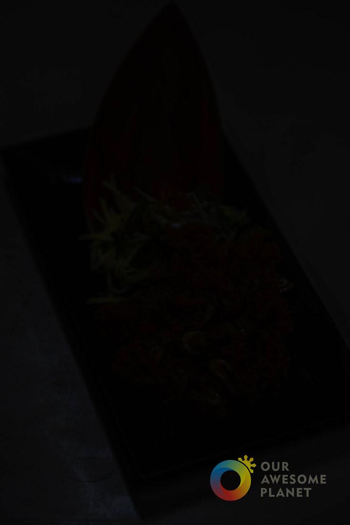 Dinner in the Dark-6.jpg