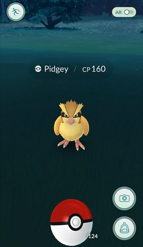 pokemon go vangen pidgey pokeball