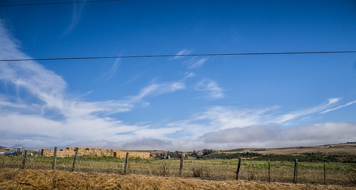 Wine Country and Coastal Highway-030