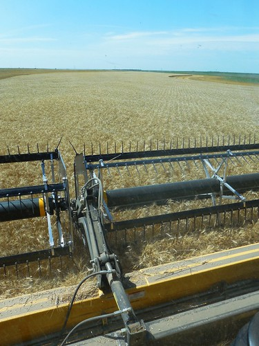From the combine cab