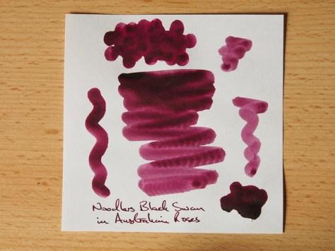Noodler's Black Swan in Australian Roses - Ink Review - Shading