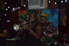 588 Trumpet Black
