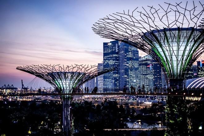 Singapore skyline from the Super Tree grove