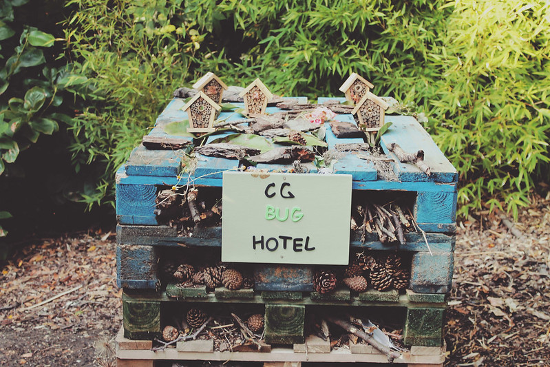 Chewton Glen bug hotel