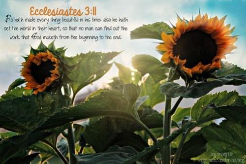 Ecclesiastes 3:11