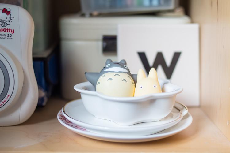 Totoro shelf collection