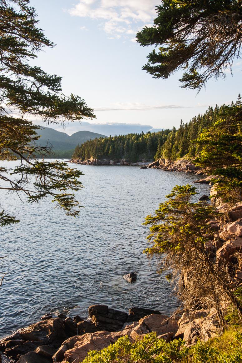 acadia national park | otter cliffs