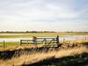 Flooded wetlands (2)