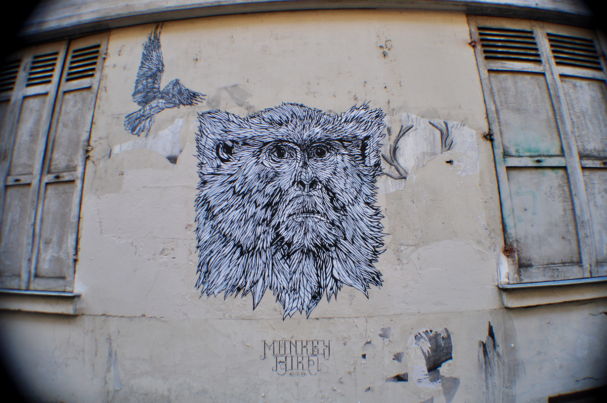 Monkey Bird 3.1