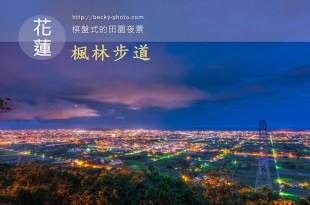 【花蓮】。哪裡可以欣賞花蓮夜景呢? [自己的小小世界]推荐的和都市不一樣的棋盤式田園夜景【楓林步道】