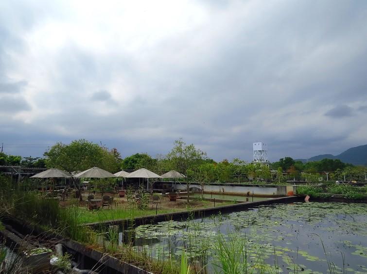 勝洋水草休閒農場 (28)