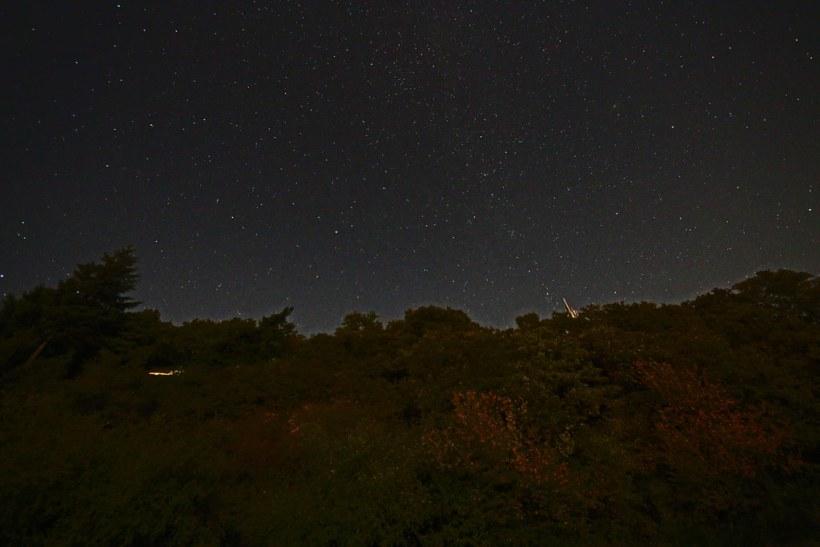 stars 020