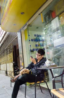 Tea and Poodle in Front of Shop