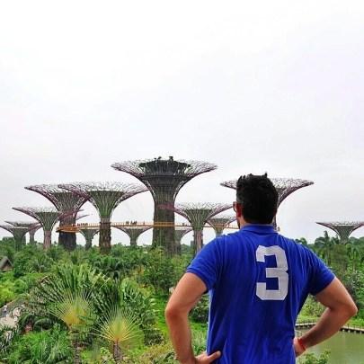 sudeste asiático: Gardens by the bay, singapur sudeste asiático - 15399856309 15347d089b z - viajar por el sudeste asiático en 21 días