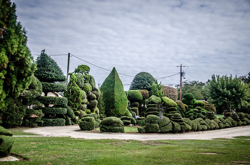 Pearle Fryer Topiary Garden-020